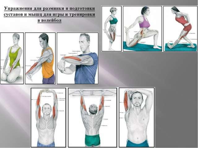 Упражнения для разминки и подготовки суставов и мышц для игры и тренировки в...
