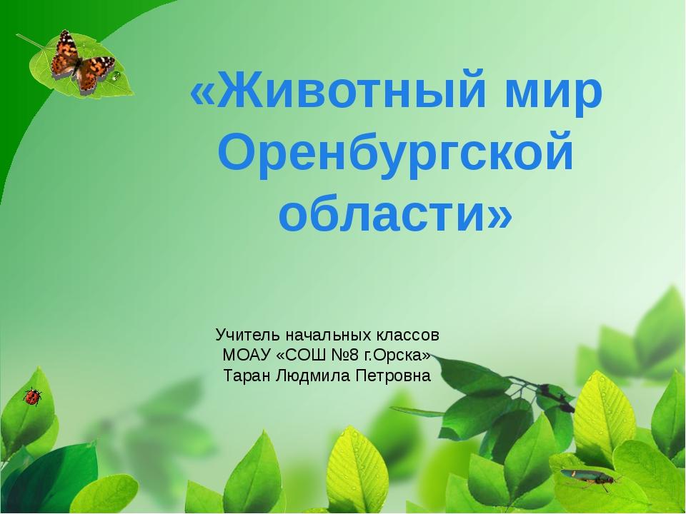 «Животный мир Оренбургской области» Учитель начальных классов МОАУ «СОШ №8 г....