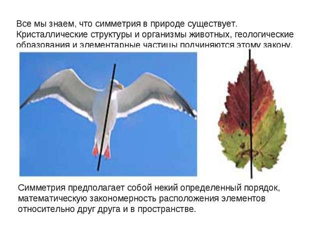 Все мы знаем, что симметрия в природе существует. Кристаллические структуры и...