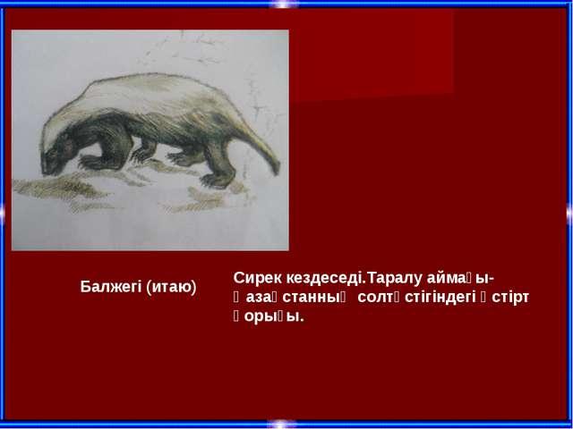 Балжегі (итаю) Сирек кездеседі.Таралу аймағы-Қазақстанның солтүстігіндегі Үст...