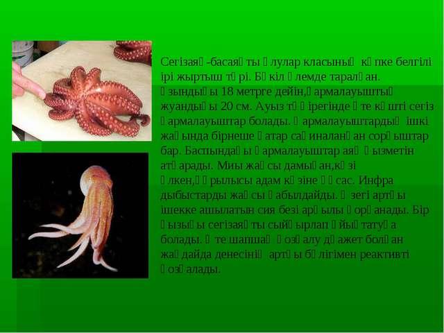 Сегізаяқ-басаяқты ұлулар класының көпке белгілі ірі жыртыш түрі. Бүкіл әлемде...