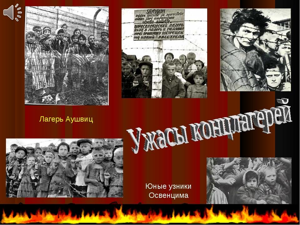Юные узники Освенцима Узники фашизма в Карелии, г.Петрозаводск Узники Бухенва...