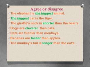 Agree or disagree The elephant is the biggest animal. The biggest cat is the