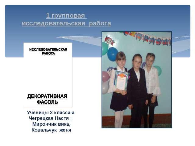 1 групповая исследовательская работа Ученицы 3 класса а Чегрецкая Настя , Мир...