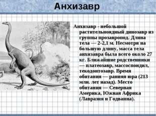 Анхизавр Анхизавр - небольшой растительноядный динозавр из группы прозавропод