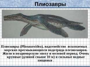 Плиозавры (Pliosauroidea), надсемейство ископаемых морских пресмыкающихся под