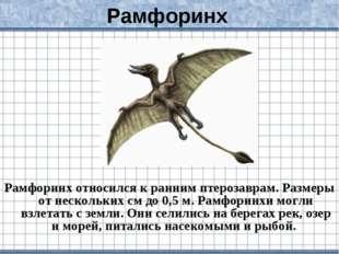 Рамфоринх Рамфоринх относился к ранним птерозаврам. Размеры от нескольких см