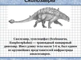 Сколозавры Сколозавр, эуоплоцефал (Scolosaurus, Euoplocephalus) — травоядный