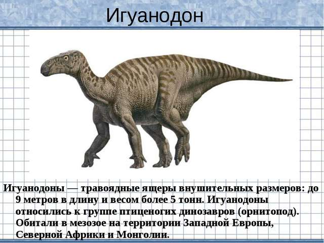 Игуанодон Игуанодоны — травоядные ящеры внушительных размеров: до 9 метров в...