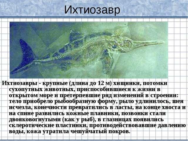 Ихтиозавр Ихтиозавры - крупные (длина до 12 м) хищники, потомки сухопутных жи...