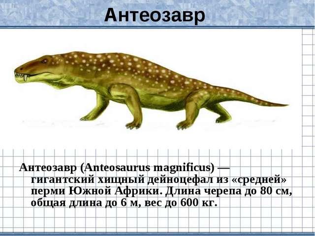Антеозавр Антеозавр (Anteosaurus magnificus) — гигантский хищный дейноцефал и...