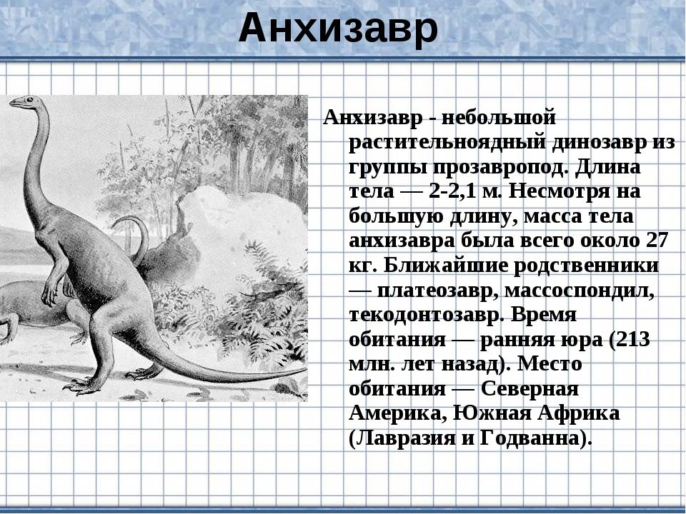 Анхизавр Анхизавр - небольшой растительноядный динозавр из группы прозавропод...