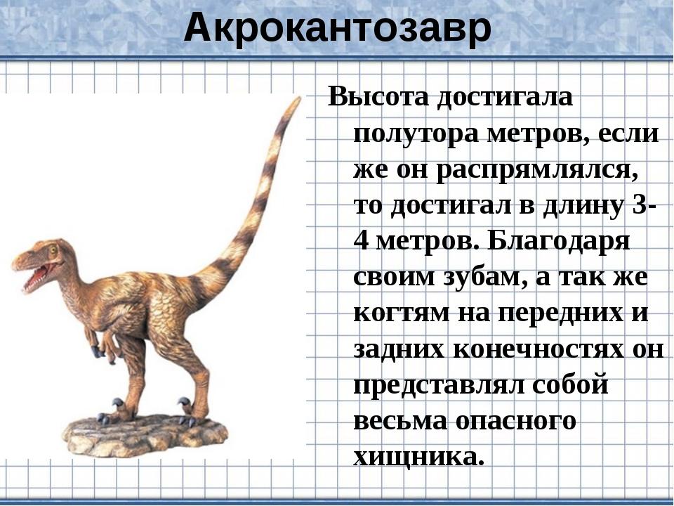 Акрокантозавр Высота достигала полутора метров, если же он распрямлялся, то д...