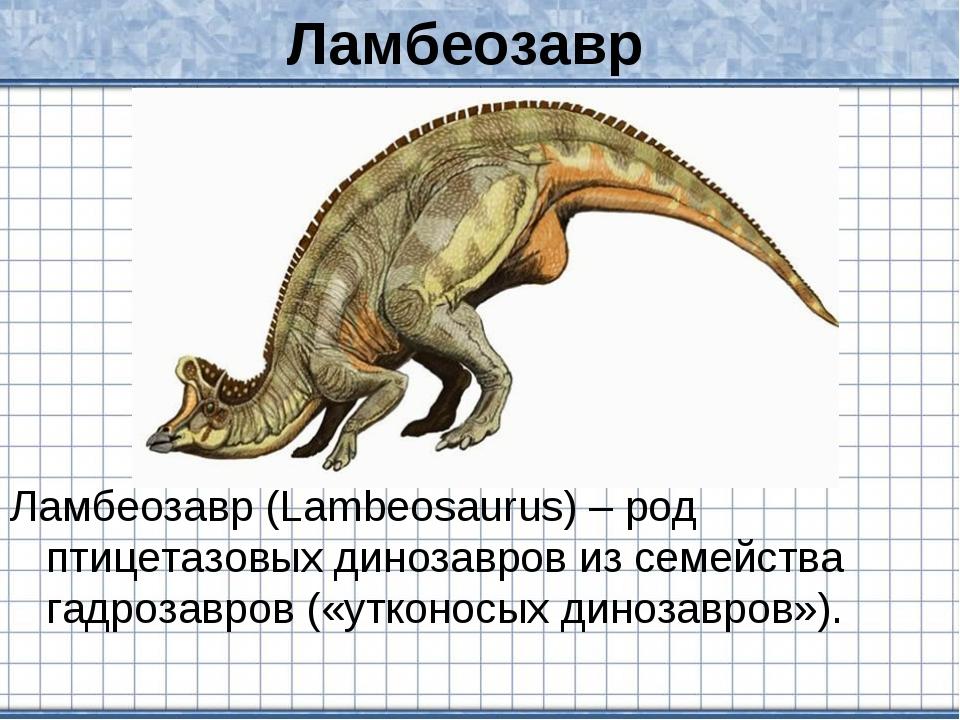 Ламбеозавр Ламбеозавр (Lambeosaurus) – род птицетазовых динозавров из семейст...
