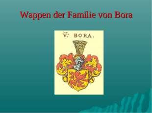 Wappen der Familie von Bora