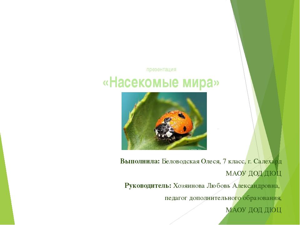презентация «Насекомые мира» Выполнила: Беловодская Олеся, 7 класс, г. Салеха...