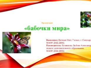 Презентация «бабочки мира» Выполнил: Витязев Олег, 7 класс, г. Салехард МАОУ