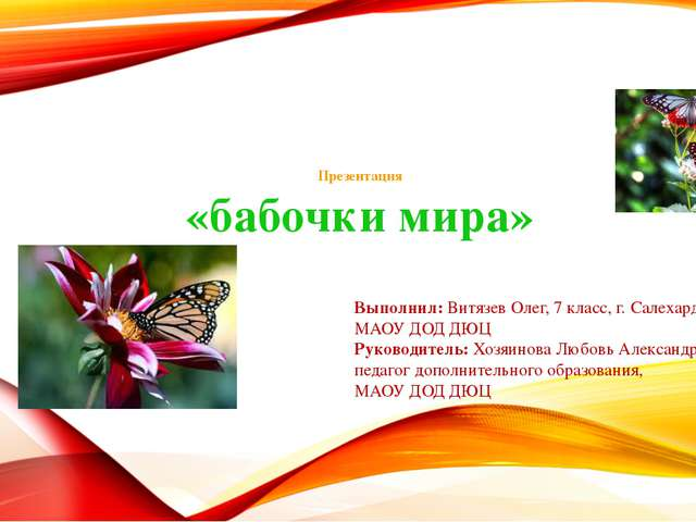 Презентация «бабочки мира» Выполнил: Витязев Олег, 7 класс, г. Салехард МАОУ...
