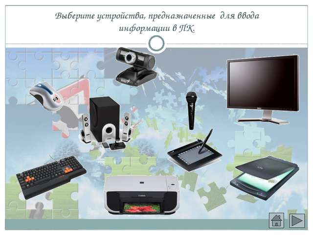 Выберите устройства, предназначенные для ввода информации в ПК.
