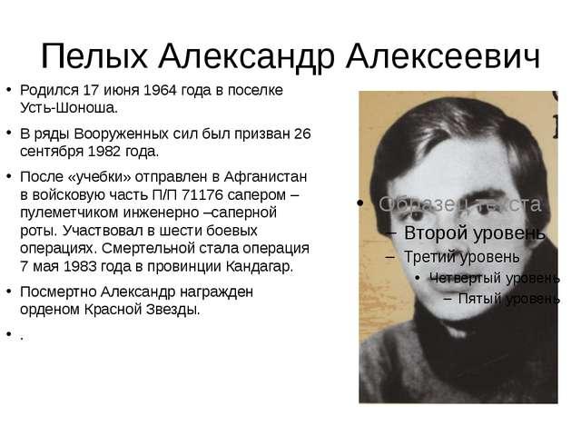 Пелых Александр Алексеевич Родился 17 июня 1964 года в поселке Усть-Шоноша. В...