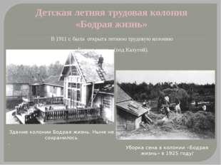 Детская летняя трудовая колония «Бодрая жизнь» В 1911 г. была открыта летнюю