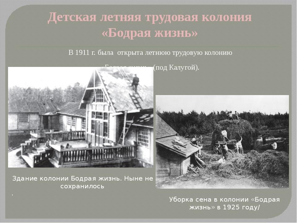 Детская летняя трудовая колония «Бодрая жизнь» В 1911 г. была открыта летнюю...