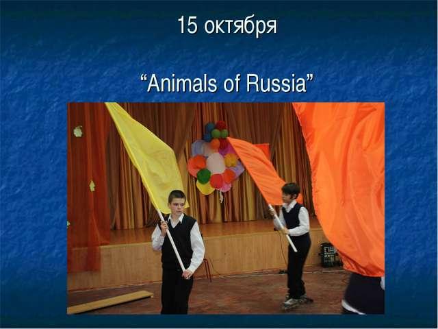 """15 октября """"Animals of Russia"""""""