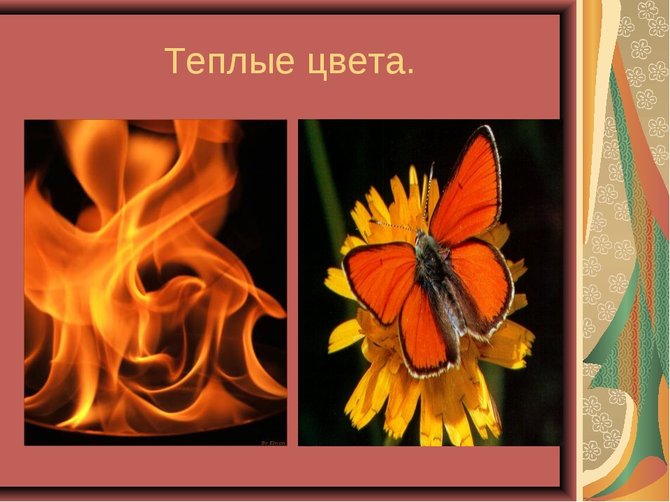 Теплые цвета.