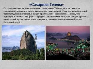 «Сахарная Голова» Сахарная голова не очень высокая гора– всего 396 метров – н