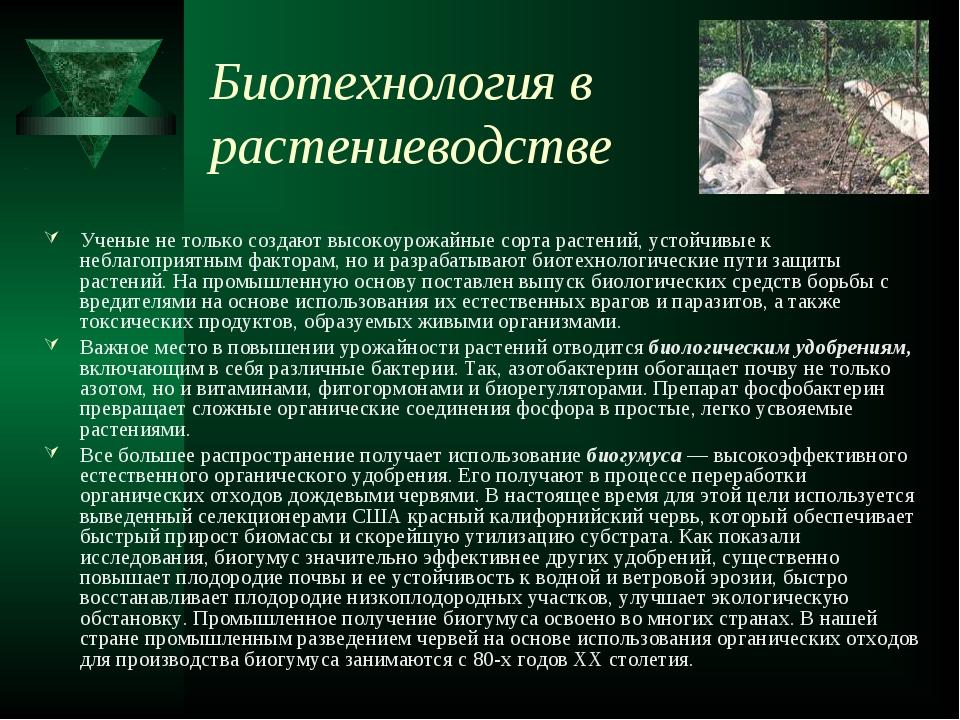 Биотехнология в растениеводстве Ученые не только создают высокоурожайные сорт...