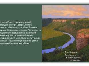«Га́личья Гора́» — государственный заповедник в центре Северо-Донского релик