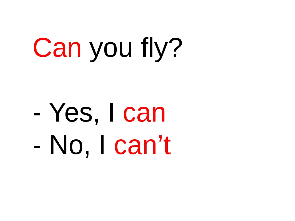 Can you fly? - Yes, I can - No, I can't