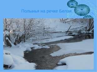 Полынья на речке Белая.