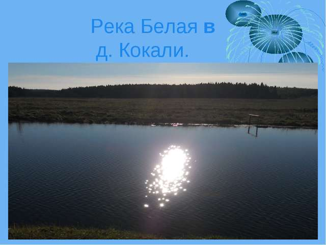 Река Белая в д. Кокали.
