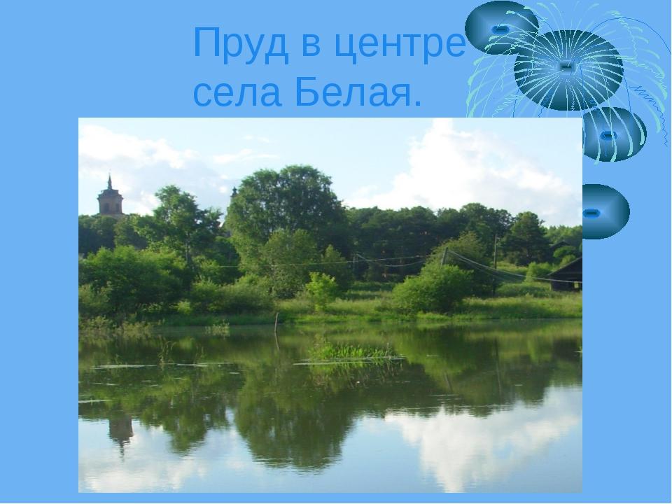 Пруд в центре села Белая.