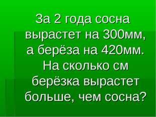 За 2 года сосна вырастет на 300мм, а берёза на 420мм. На сколько см берёзка в