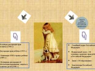 Семейный кодекс Российской Федерации Федеральный закон « Об основных гаранти