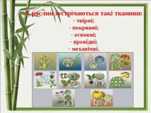 У рослин зустрічаються такі тканини: твірні; покривні; основні; провідні; ме