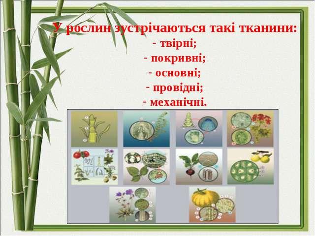 У рослин зустрічаються такі тканини: твірні; покривні; основні; провідні; ме...