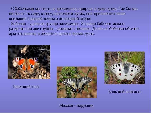 С бабочками мы часто встречаемся в природе и даже дома. Где бы мы ни были –...