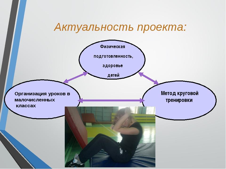 Актуальность проекта: Организация уроков в малочисленных классах Метод круго...