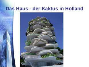 Das Haus - der Kaktus in Holland