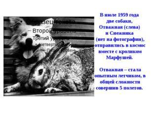 В июле 1959 года две собаки, Отважная (слева) и Снежинка (нет на фотографии),