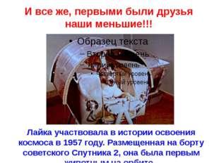 Лайка участвовала в истории освоения космоса в 1957 году. Размещенная на борт