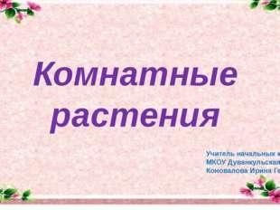 Комнатные растения Учитель начальных классов МКОУ Дуванкульская ООШ Коновало