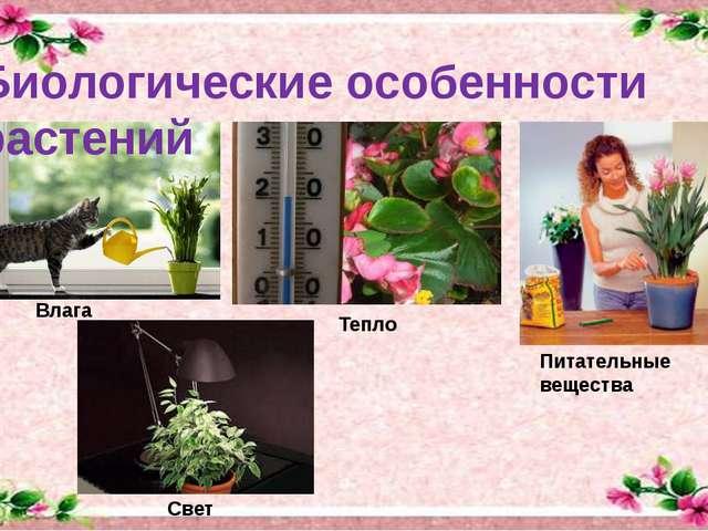 Биологические особенности растений Питательные вещества Влага Тепло Свет