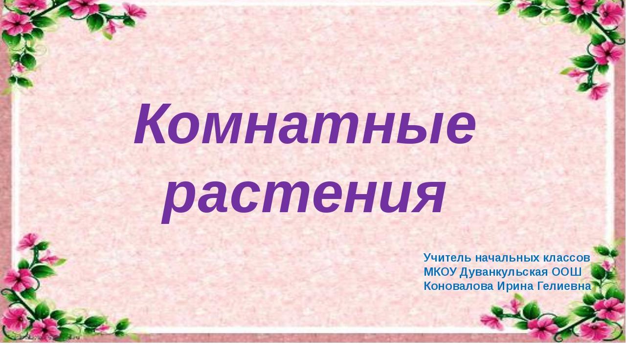 Комнатные растения Учитель начальных классов МКОУ Дуванкульская ООШ Коновало...