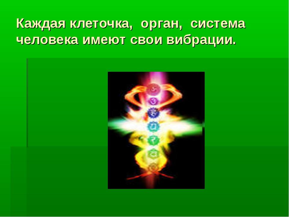 Каждая клеточка, орган, система человека имеют свои вибрации.