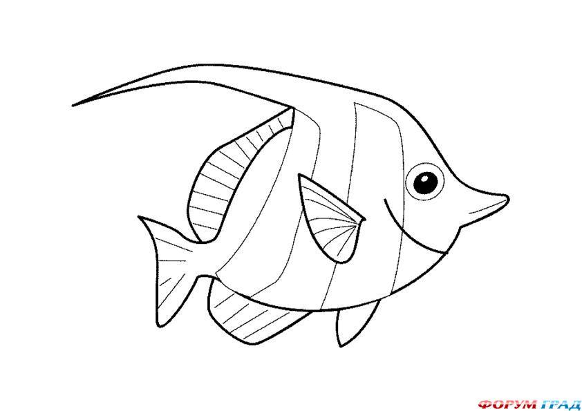 Раскраска рыба - 15 Апреля 2011 - Детские раскраски. Раскрась свой мир, сделай его ярче!