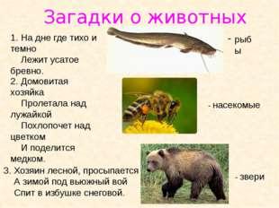 Загадки о животных 1. На дне где тихо и темно Лежит усатое бревно. 2. Домовит